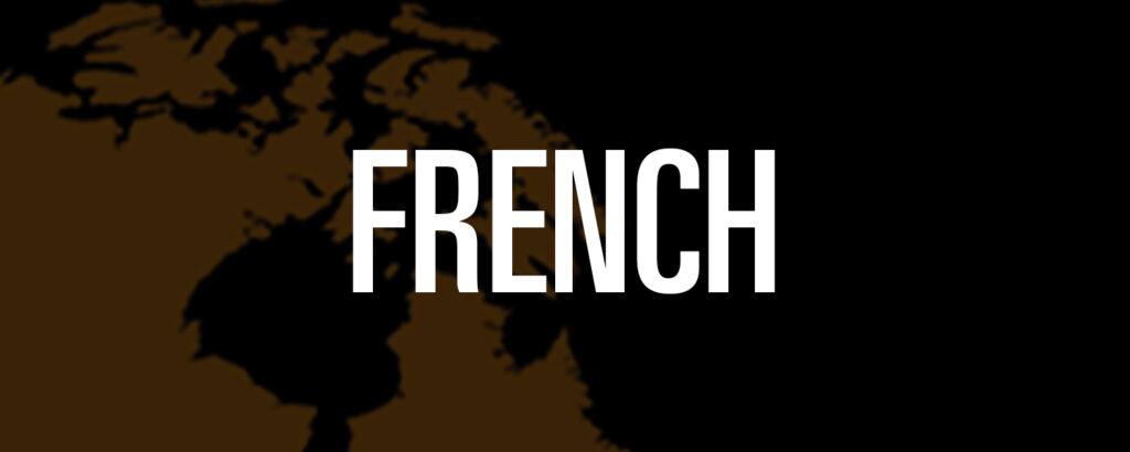 Proceedings_LanguageLink-FRN
